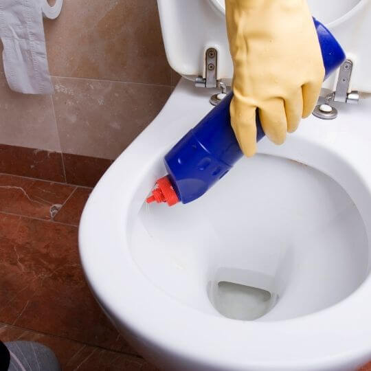 cleaning_toilet_bowl_with_lysol.jpeg
