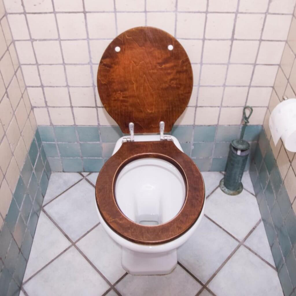 wooden_toilet_seat_cleaning.jpeg